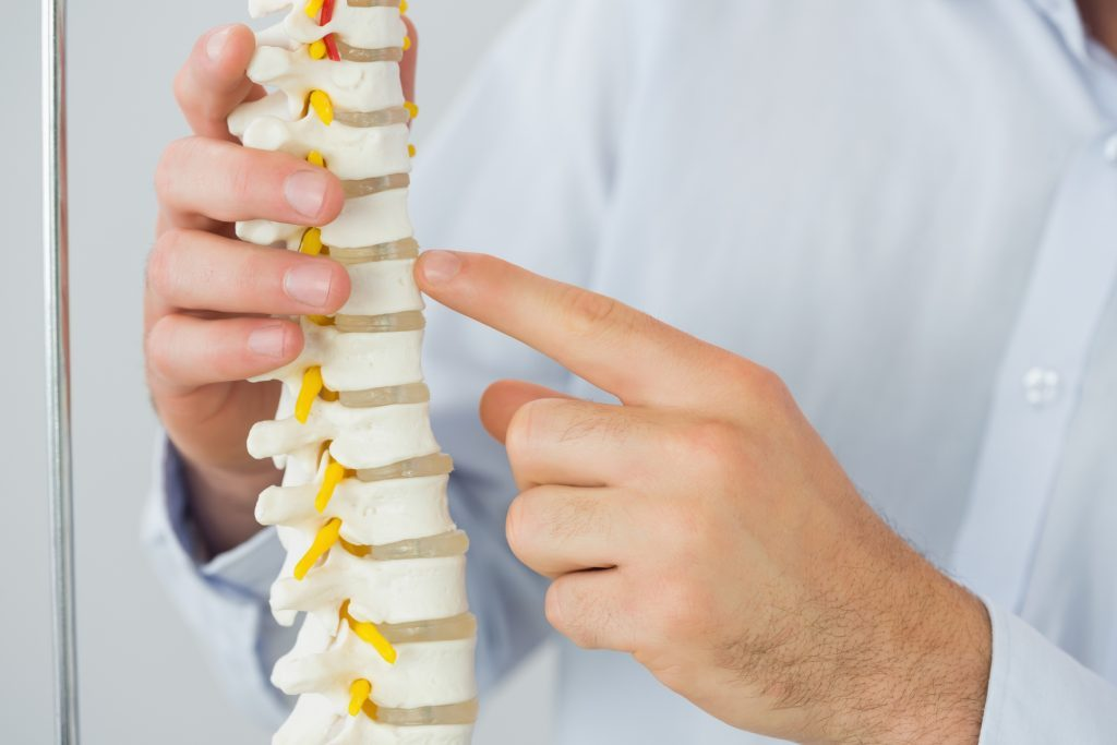 Berks Chiropractic Specialists helps you pay attention to your spine and how simple adjustments can effect your whole body. Berks County Chiropractic Specialists is a quality chiropractor in Fleetwood PA that provides not only chiropractic services, but supplements and cleansing treatments to clients around Reading PA, Oley PA, Blandon PA, Kutztown PA, Laureldale PA, and more!